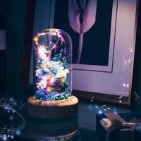 Rose Streamer Bottle Wireless Bluetooth Speaker Rechargeable LED Night Light With Flower in Glass Home Decoration Table Lamp