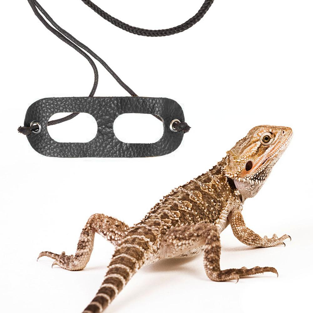 Lizard Traction Rope Leash Reptile Pet Outdoor Carrying Walking Harness Leather