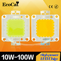 Epistar COB LEVOU Chip de alta Potência 10 W 20 W 30 W 50 W 100 W DC 24 V-38 V Integrado SMD Para Holofotes Holofote Branco Quente/branco