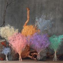 1 пучок Гипсофила 45-50 см DIY Свадебная вечеринка реквизит для фотосессии чистые натуральные растительные сушеные цветы кафе библиотека украшения дома