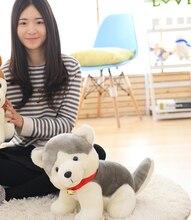 big gray plush dog toy creative stuffed Pomeranian dog doll gift about 50cm