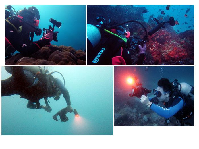 ARCHON W40VR D34VR Underwater UV light Photography Diving Led Fashlight Video Torch + 32650 +charger