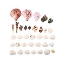 Новинка 100 г пляжные смешанные морские ракушки ремесло ракушки аквариум Морской Декор