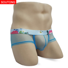 transparent mens underwear sexy retro mesh light thin perspective panties low waist gay interesting briefs stws03