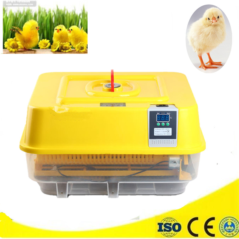 все цены на Mini Electric Eggs Incubator Fully Automatic Poultry Chicken Hatching machine equipment tool incubator for sale