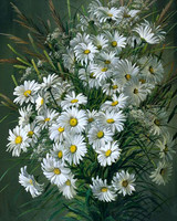 Home Decor Acrylic Paint Morden White Daisies Kit DIY Oil Painting By Numbers Hand Painted Wall