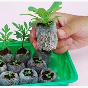 30pcs,25mm jify peat Planting,