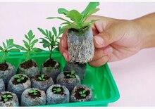 30pcs,25mm jify 이탄 심기, 절단, 정원 용품, 씨앗 초보, 야채 씨앗 pellete.new 화분, 봄 필요