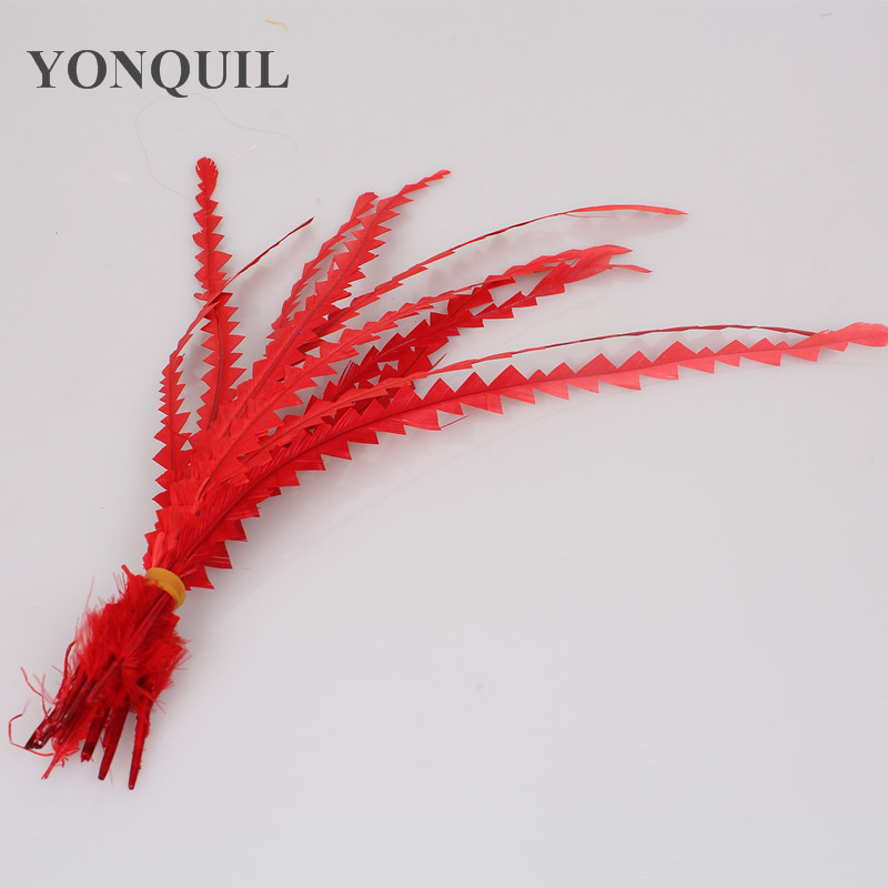 Multiple colors 100pcs/Lot Colored 25-30cm shaped Loose COQUE ROOSTER TAIL FEATHERS/long feathers for fascinator hats&millinery