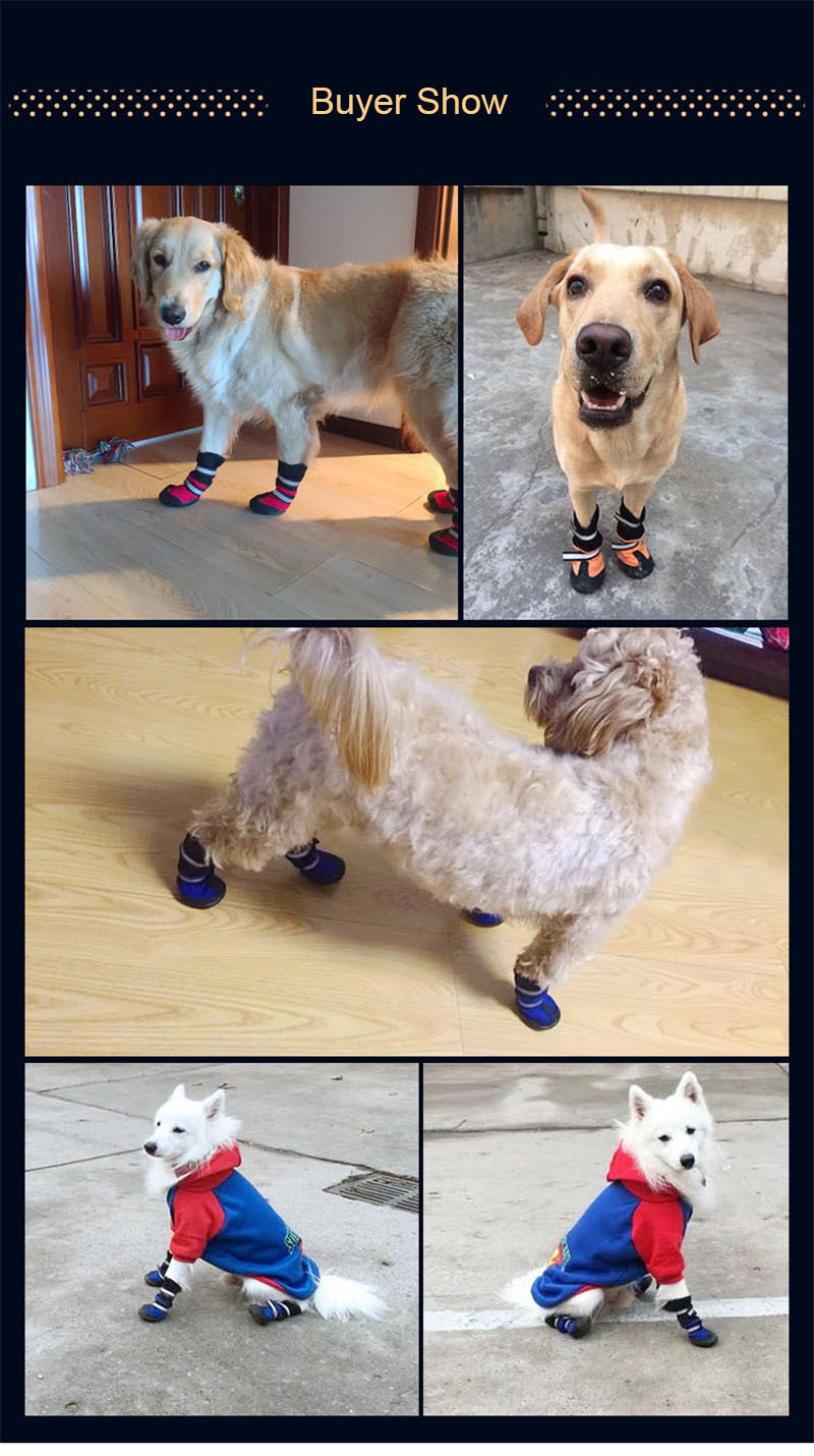 shoes dog (10)