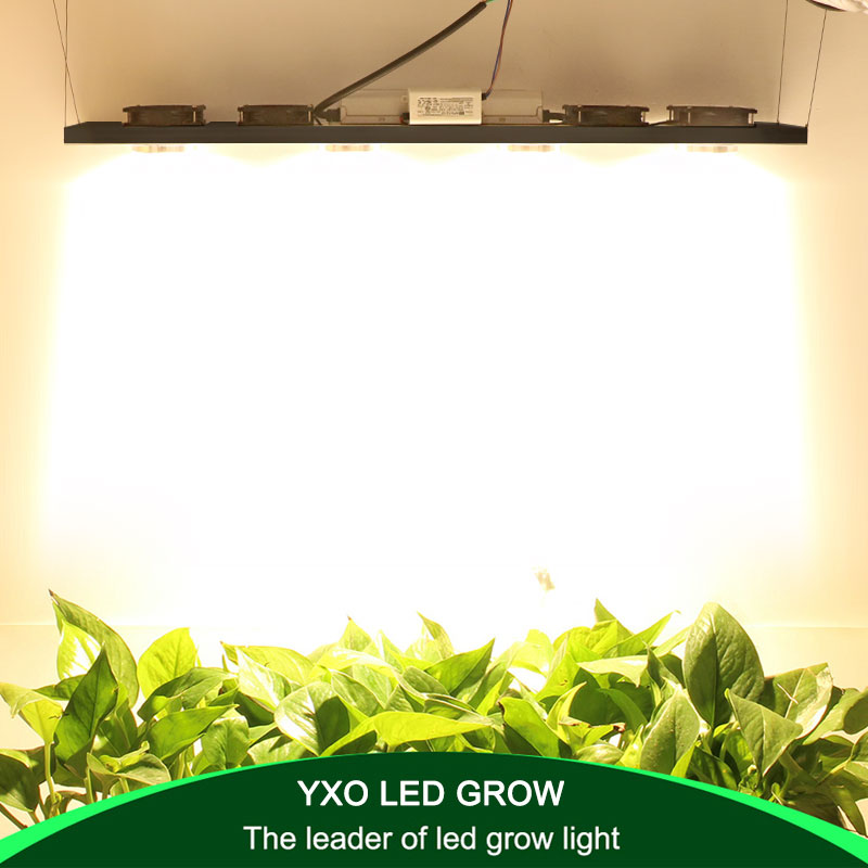 Dimmable Cree Cxb3590 400w Cob Led Grow Light Full Spectrum 45000lm Hps 600w Growing Lamp Indoor Plant Growth Lighting Panel Led Grow Lights Aliexpress