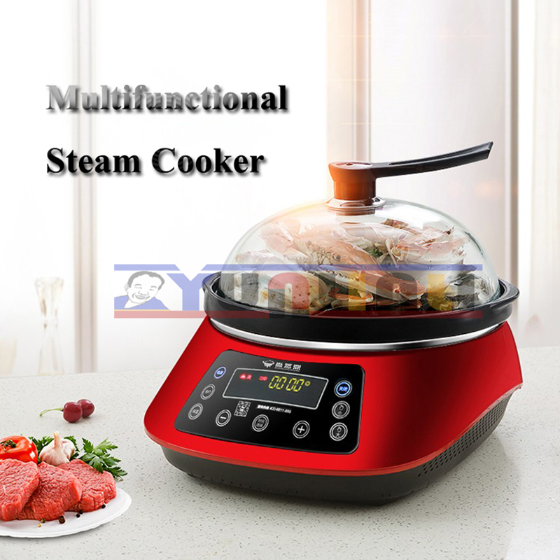Electric Food Steamers Home Steaming & Boiling Steam Pot Ceramic Pot Multifunctional Sauna Pot ZDH-ZL-22 multifunction electric steamers household steaming