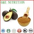 China suppliers  certified high quality avocado powder / avocado butter     10:1  400g