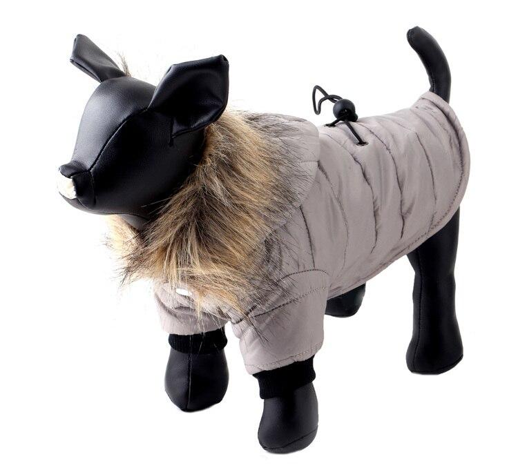 dog coat winter