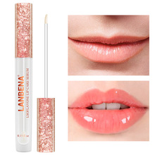 Hot sale Lip Care Essence Full Plumper Mask Reduce Fine Lines Repairing Moisturizing Beauty Tool