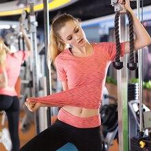 Lady's fitness quick dry sport shirt Female models sport elastic running, pantyhose Slim, thin, gymnastics, tight yoga shirt