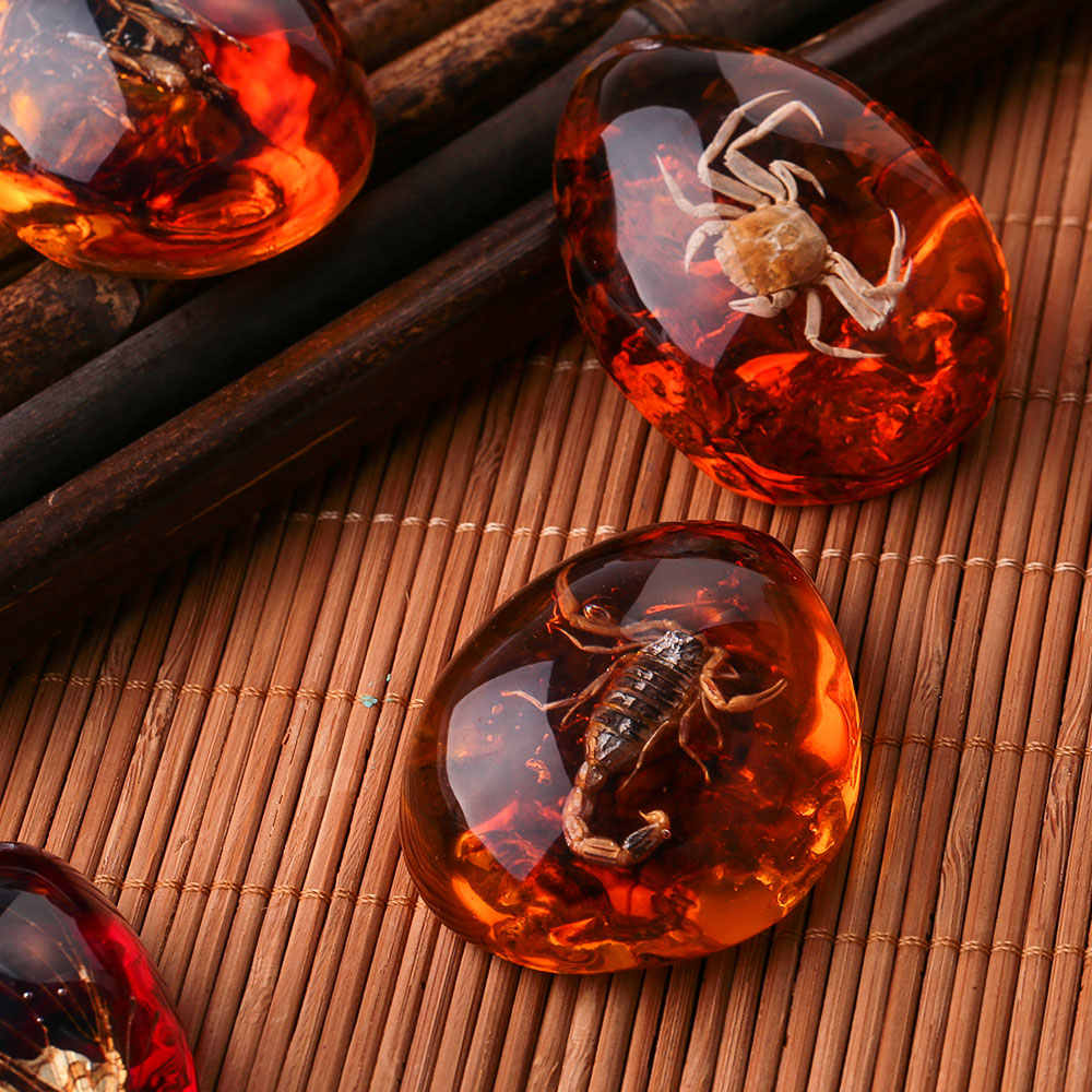 Fashion Natural Insects Amber Gemstone Ornament Originality Scorpions butterfly Bee Crab Decorations DIY Crafts Gift