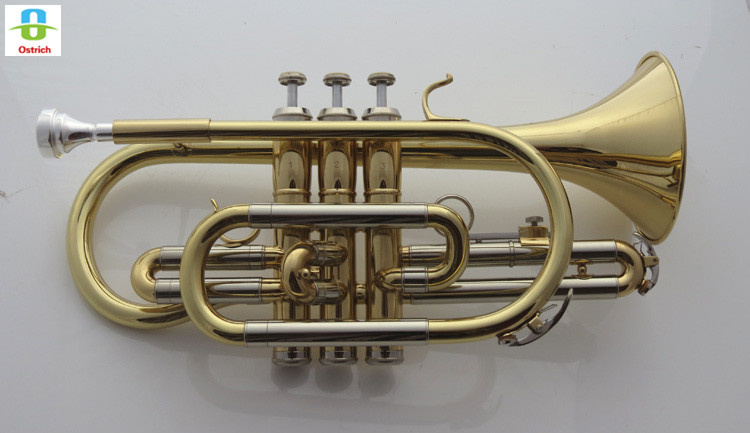 Bb Flat Trumpe Cornet Brass Instrument with Carrying Case Gloves Cleaning Cloth Grease Brushes