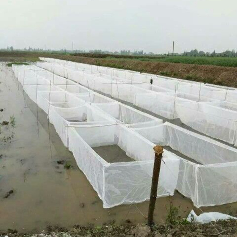 4X2X1.2 Meters 60/80/100 Mesh High Density Thicken Leeches Breeding Net Case Anti-escape Fish Net Customization Size Available
