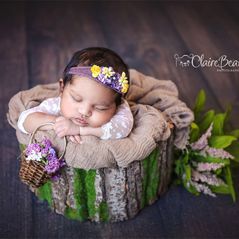 Vintage Bark bowl Newborn Baby Wood Bed Wooden Wood Fabric Bed Newborn Photography Props Bucket Newborn Photography Bed фото