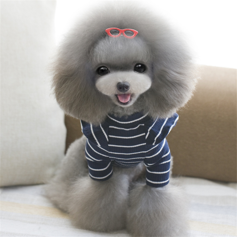 girl dog clothes (4)