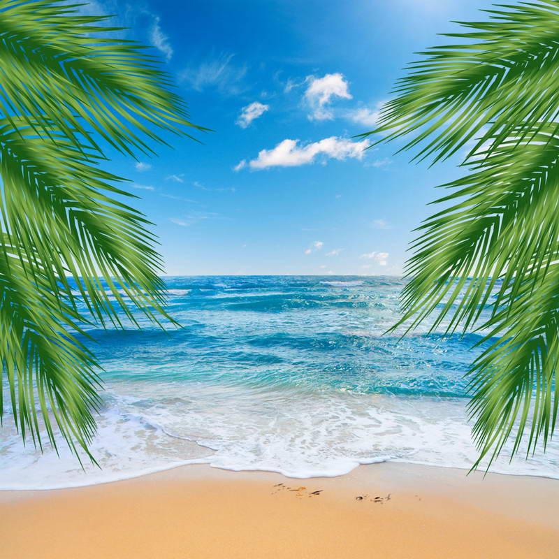 Palm Tree Beach: 10x10FT Blue Sky Sea Ocean View Palm Tree Sand Beach Wave