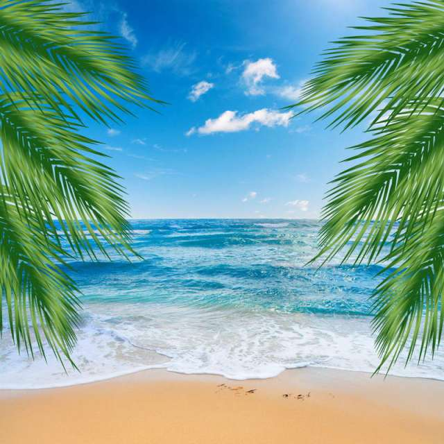 Sand Beach In Summer Sky Background: 10x10FT Blue Sky Sea Ocean View Palm Tree Sand Beach Wave