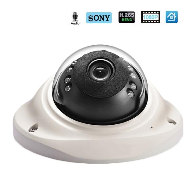 Hamrolte IP H.265 SONY IMX323 UltraLow Illumination1080P Kẻ Phá Hoại Chống Dome Âm Thanh Ghi Phát Hiện Chuyển Động ONVIF