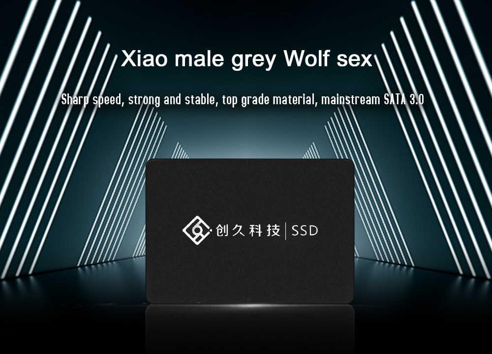 SSD satra3 120 GB/128 GB/256GB de 2,5 pulgadas de lectura/velocidad wirte 470-500 MB/S disco duro de alta velocidad de fábrica directamente reainno Brave wolf