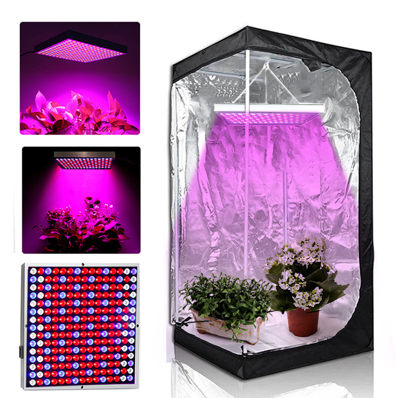 Grow Tent Lamp 1000w 225 Leds Grow Light Phyto Lamp For