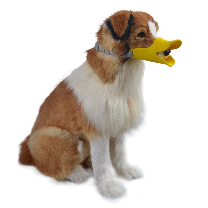 Silikonspänne Anka Hundpropp Anti-Bite Djurmaske Hundmask Maskor - Produkter för djur - Foto 6