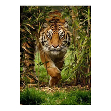 DIY 5D Diamond Painting Cross Stitch Tiger in the Forest Embroidery Household Essentials Decoration