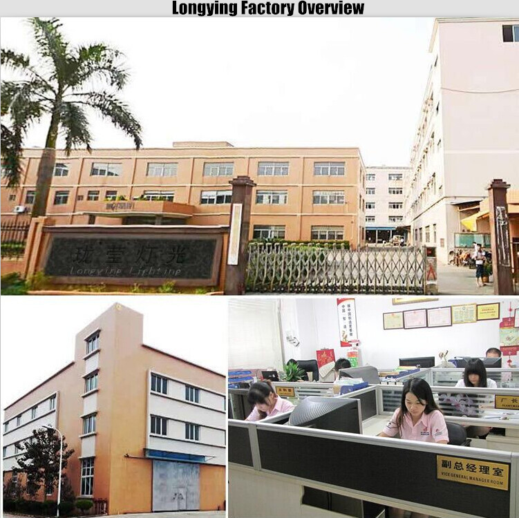longying factory overview.jpg