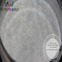 No 22 Wholesale 0 1mm 004 Iridescent White With Colorful Light Color Glitter Powder For Nail