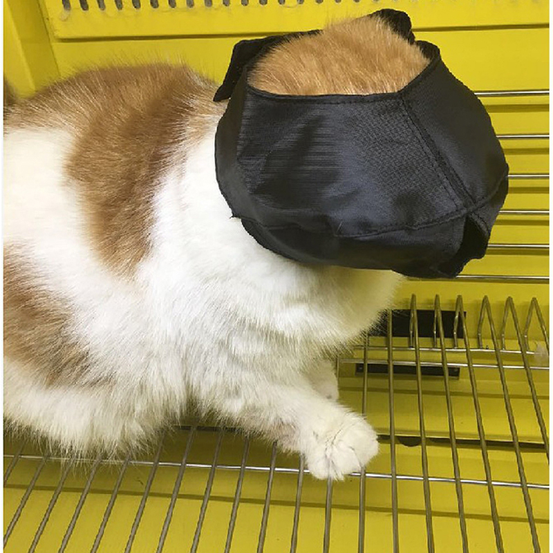 1pcs Breathable Cat Mesh Lovely Cat Anti Bite Muzzles Cat Travel Tool Bath Beauty Grooming Cat Bathing Bag Pet Supplies