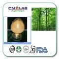 100% Natural e Orgânica De Bambu Extracts10: 1 300g