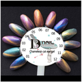 BD 6pcs/lot 10ml Gel Nail Polish 3D Magnetic Cat Eye Chameleon UV LED Lamp Soak Off UV Gel Polish professional