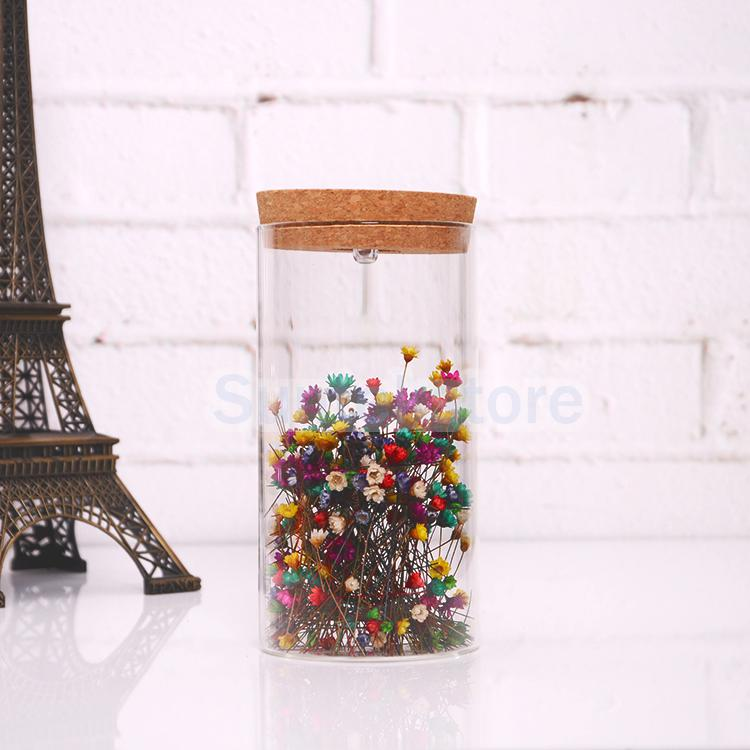 Glass Bottle Jar Hydroponic Terrarium Container with Glow LED Cork Stopper