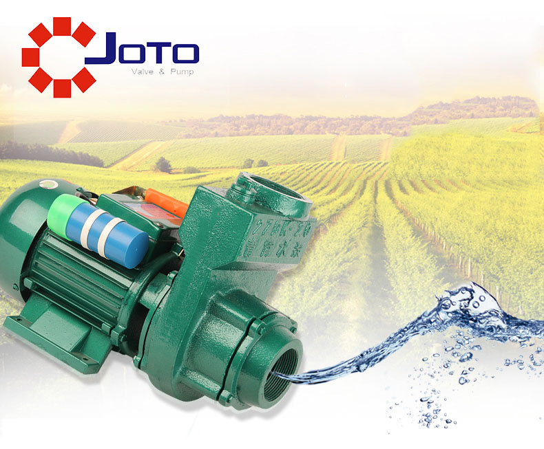 1.5ZDK-20 Three Phase Cast Iron Big Flow 380V 750W 1.5 Inch Centrifugal Pump Agricultural Irrigational Pump Self-priming Pump цена и фото