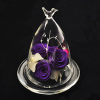 Betty Store Free Shipping Beautiful Bird Glass Dome Vase Home Decorative Creative Glass Cover Friend Gift