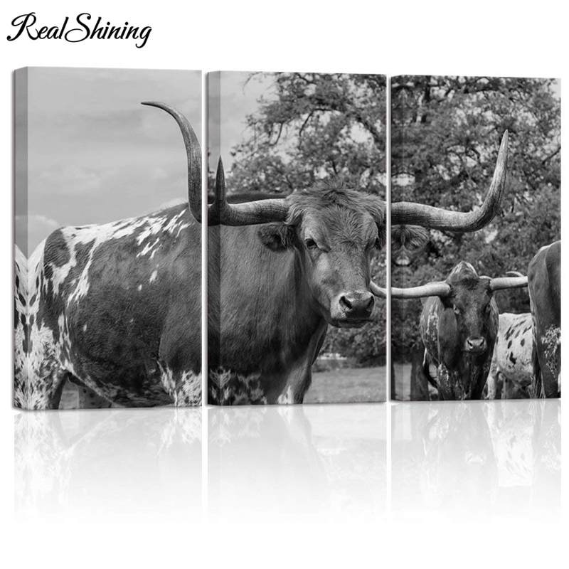 3 Pieces 5D Diy Diamond painting Highland Texas Longhorn Cow full square round drill diamond emboery home decoration FS4570