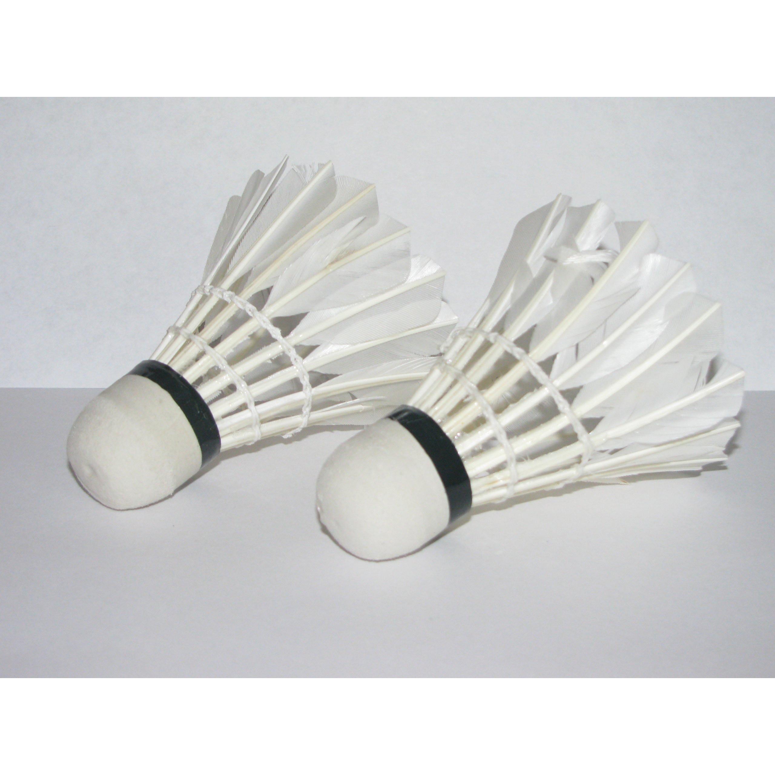 Super sell New LED Light-Up Badminton Birdies (Set of 2) Shuttlecocks Shuttlecock Feather