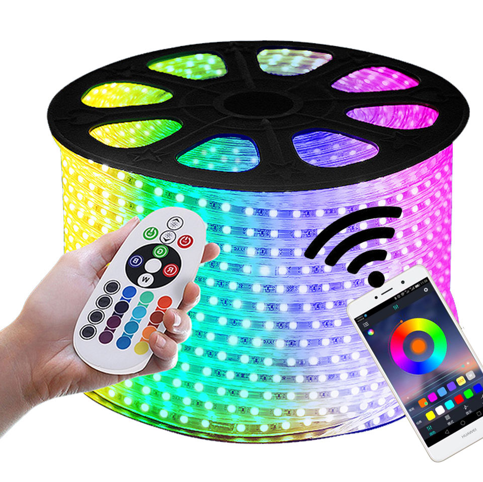 GD 1M 5M 8M 10M 12M LED Streifen Mit IR RF IP65 Wasserdichte oder Bluetooth fernbedienung AC220V Dimmbare LED Streifen Licht