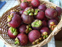 10pcs/bag Mangosteen fruit Seeds < Not Fruit > Organic heirloom fruit seeds tree seeds Nutrient-Rich Queen Of Tropical Fruits