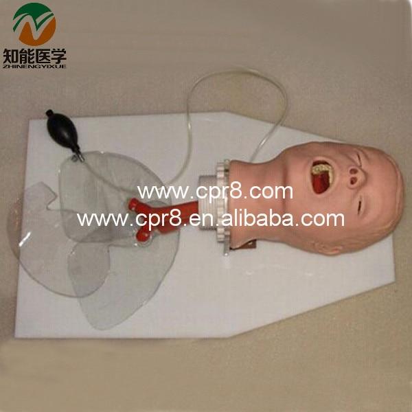 Airway Training Model BIX-J50 WBW023 bix lv10 medical education training