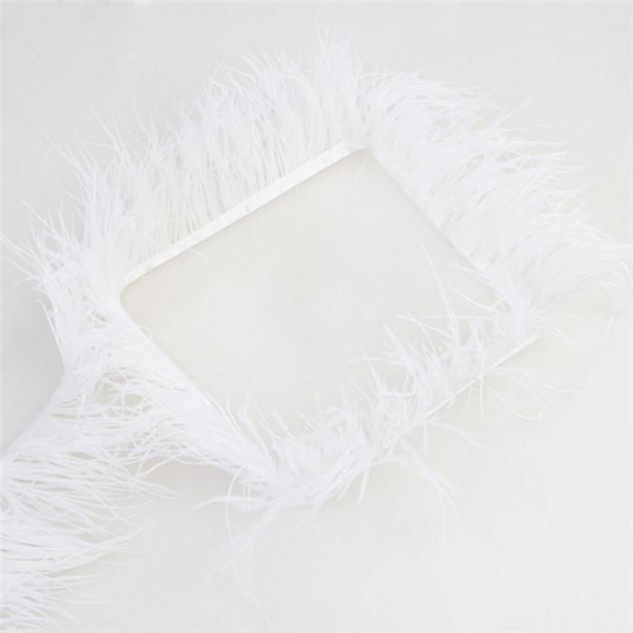 00 ostrich feather trim 3
