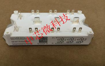 Free shipping! In stock 100%New and original     SKM40GD124D free shipping xc3020 70pg84m new original and goods in stock