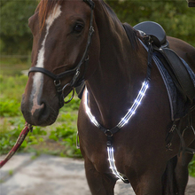 MOYLOR USB Rechargeable LED Horse Harness Night Visible Horse Riding Equestrian Horse Halters Bridle Breastplate Collar Light