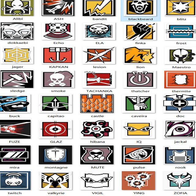 Set of 40 Rainbow Six Seige Laptop Sticker R6 Operators Icon Waterproof  Decal Stickers for Luggage Suitcase