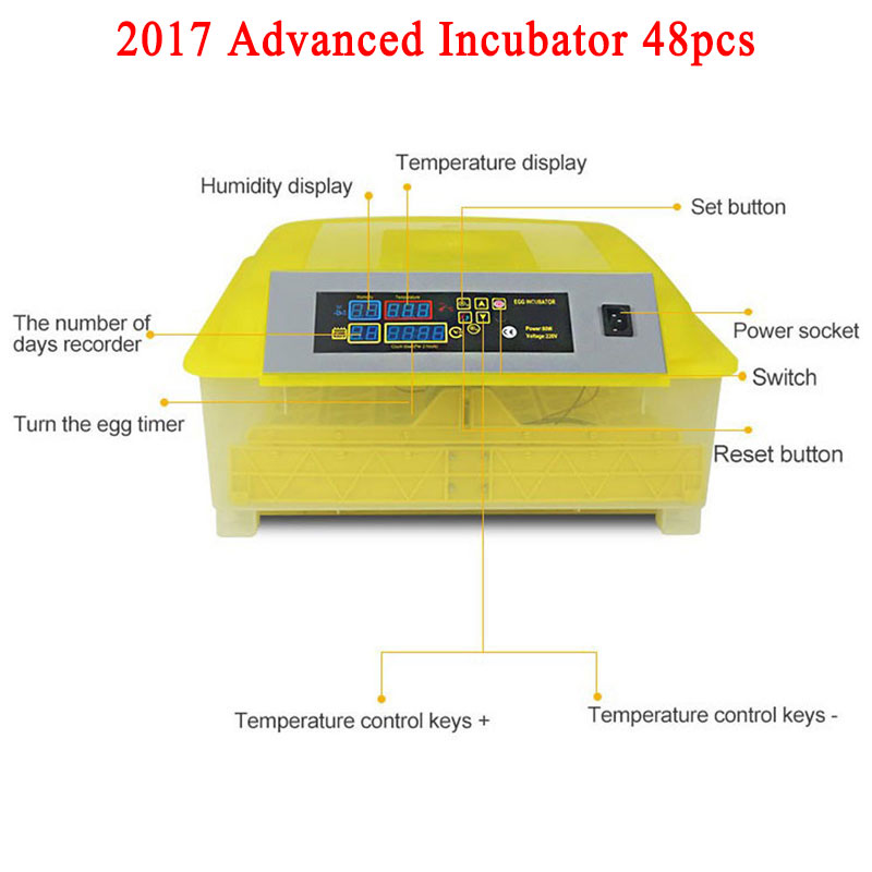 1pcs 48-Egg Mini Egg Incubator Poultry Chicken Goose Quail Duck Egg incubadora de huevos automatica Chicken Incubadora high quality best selling mini industrial egg incubator of 48 eggs for sale commercial hatcher incubadora de huevos automatica